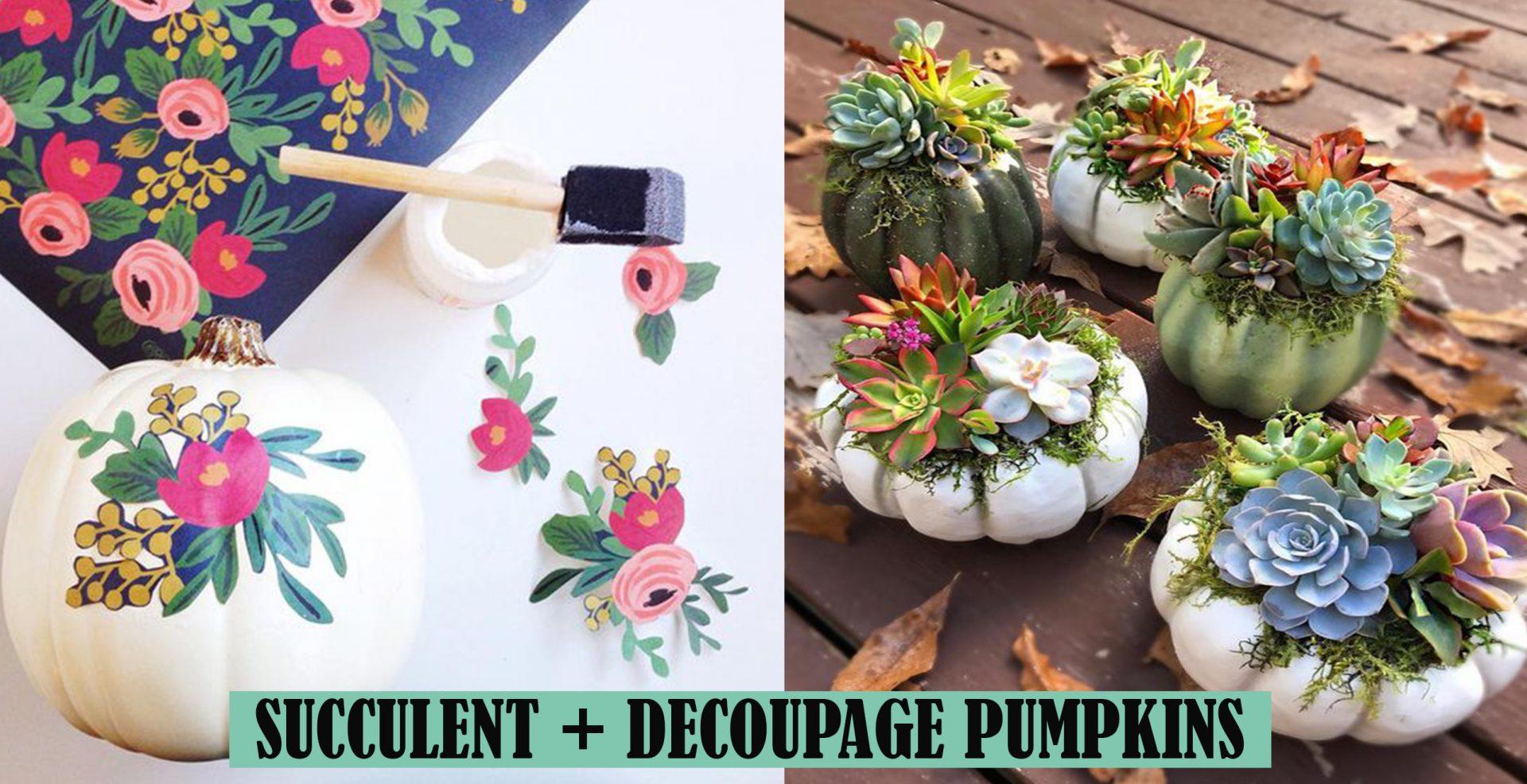 succulent decoupage pumpkins
